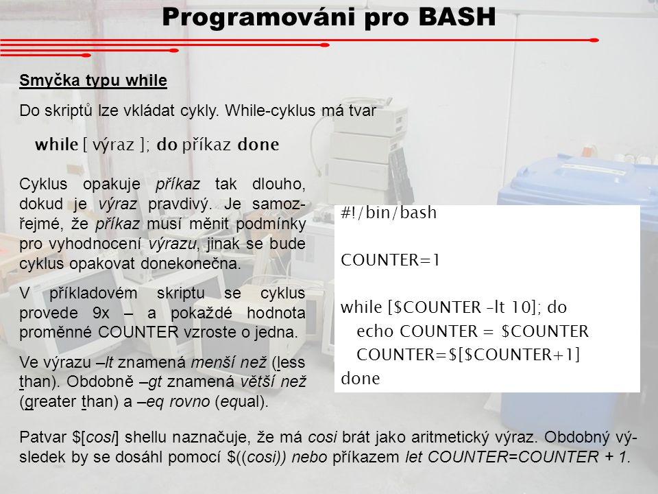 Programováni pro BASH Smyčka typu while