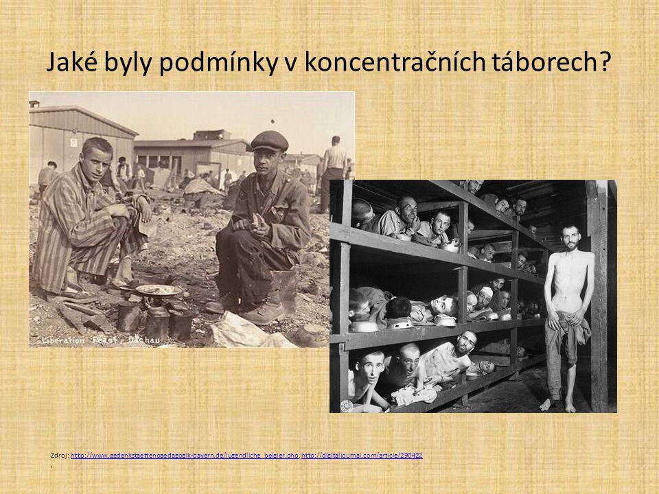 Jaké byly podmínky v koncentračních táborech