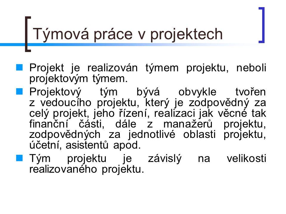 Týmová práce v projektech