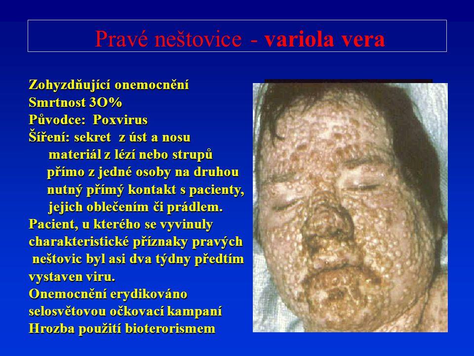 Pravé neštovice - variola vera