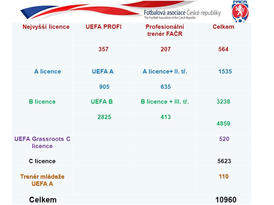 Profesionální trenér FAČR UEFA Grassroots C licence