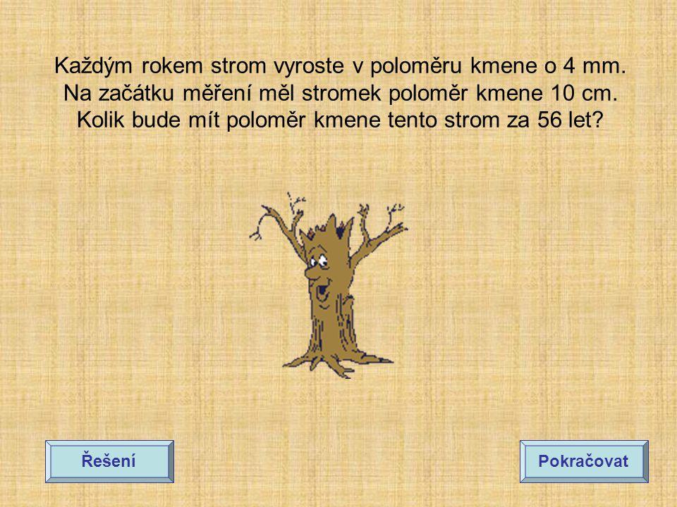 Každým rokem strom vyroste v poloměru kmene o 4 mm