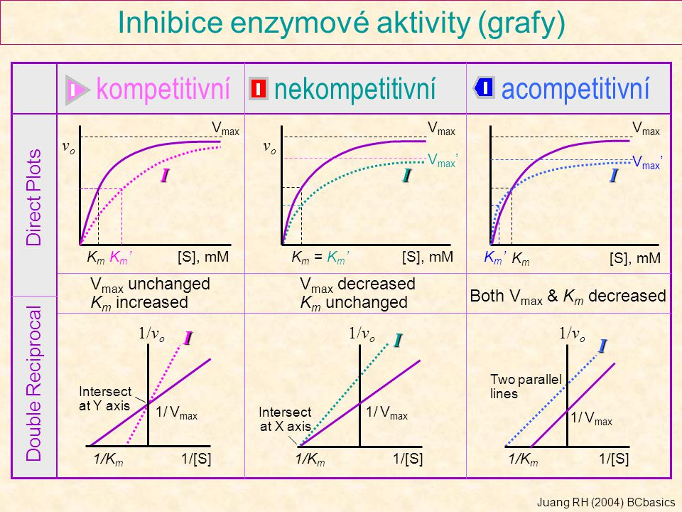 Inhibice enzymové aktivity (grafy)