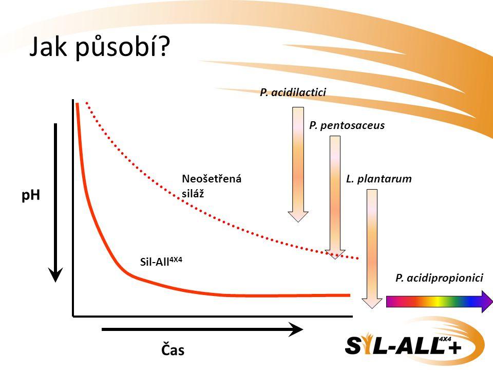 Jak působí pH Čas P. acidilactici Sil-All4X4 P. pentosaceus