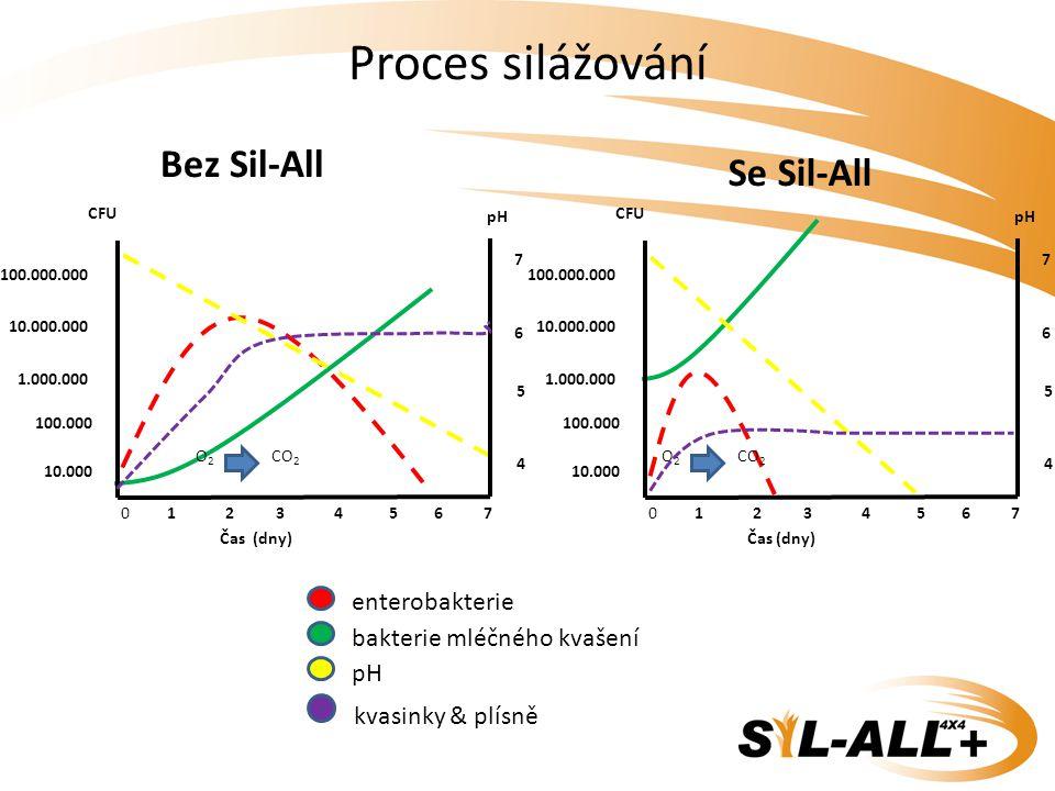 Proces silážování Bez Sil-All Se Sil-All enterobakterie