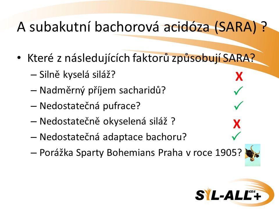A subakutní bachorová acidóza (SARA)