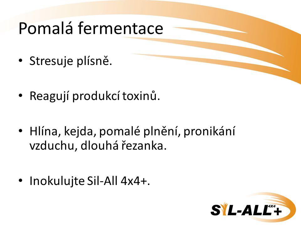 Pomalá fermentace Stresuje plísně. Reagují produkcí toxinů.