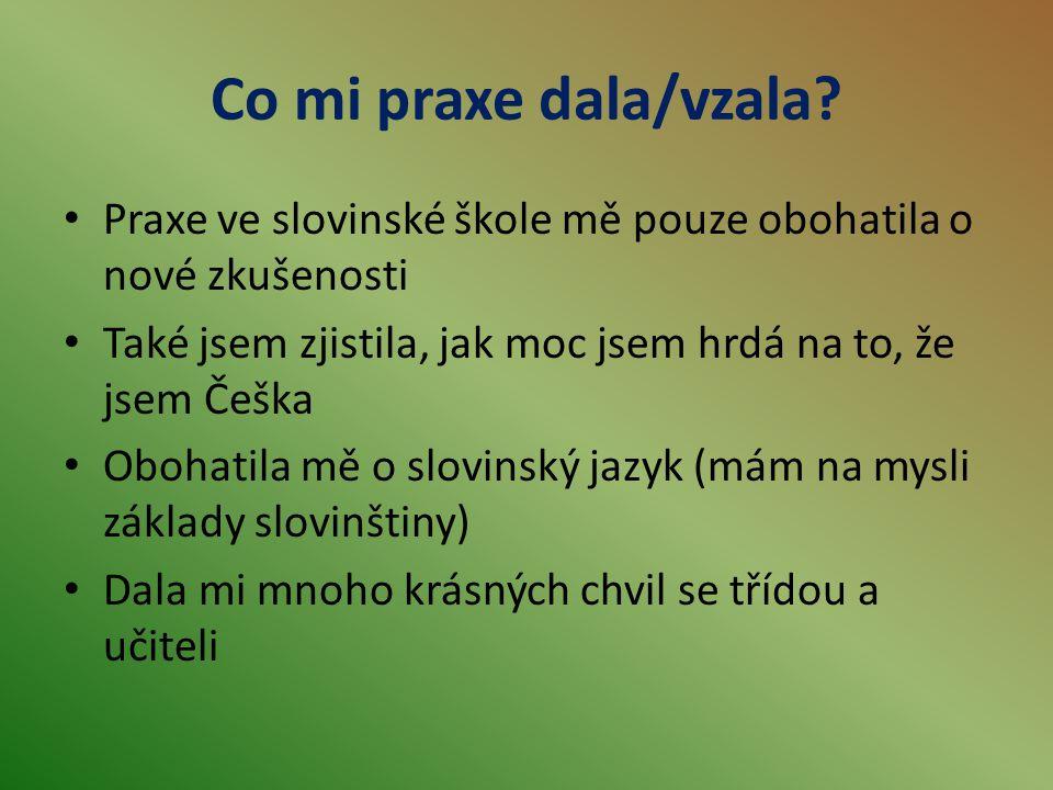 Co mi praxe dala/vzala Praxe ve slovinské škole mě pouze obohatila o nové zkušenosti. Také jsem zjistila, jak moc jsem hrdá na to, že jsem Češka.