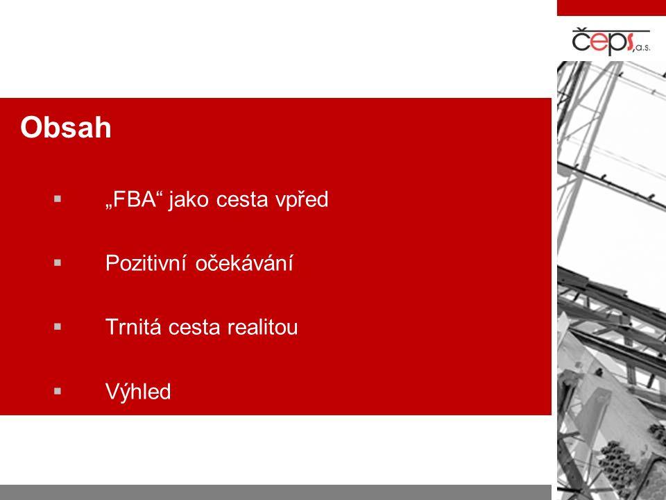 """Obsah """"FBA jako cesta vpřed Pozitivní očekávání Trnitá cesta realitou"""