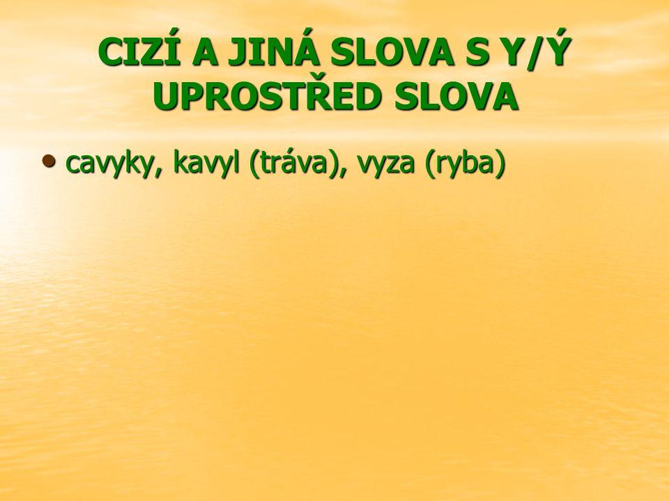 CIZÍ A JINÁ SLOVA S Y/Ý UPROSTŘED SLOVA