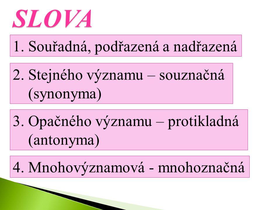 SLOVA 1. Souřadná, podřazená a nadřazená