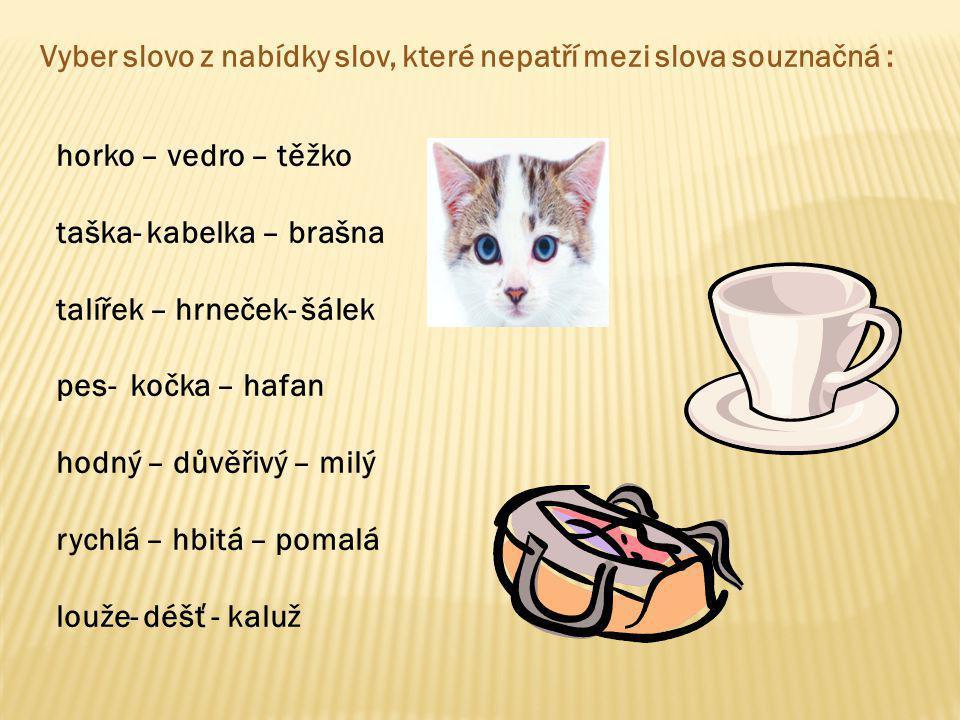 taška- kabelka – brašna talířek – hrneček- šálek pes- kočka – hafan
