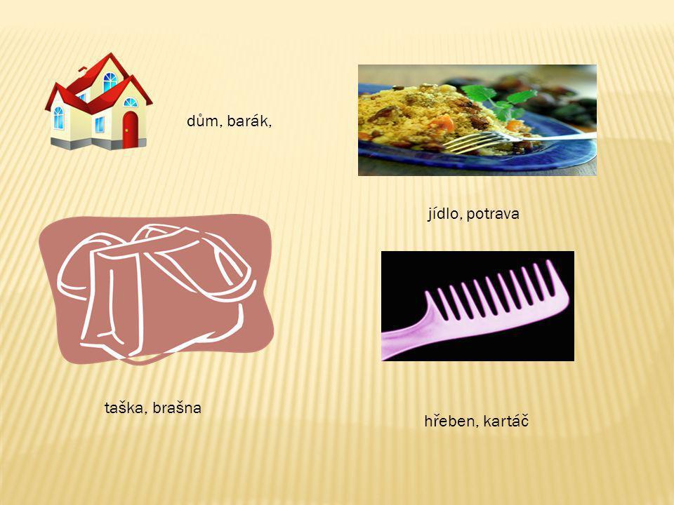dům, barák, jídlo, potrava taška, brašna hřeben, kartáč