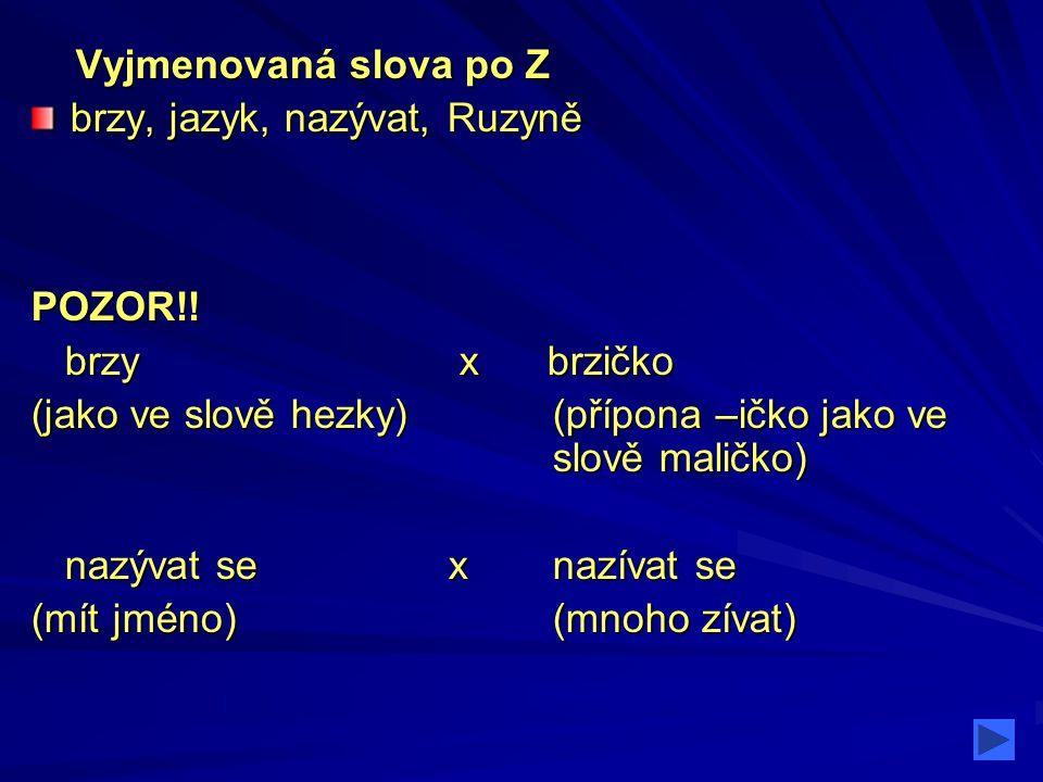 Vyjmenovaná slova po Z brzy, jazyk, nazývat, Ruzyně. POZOR!! brzy x brzičko.