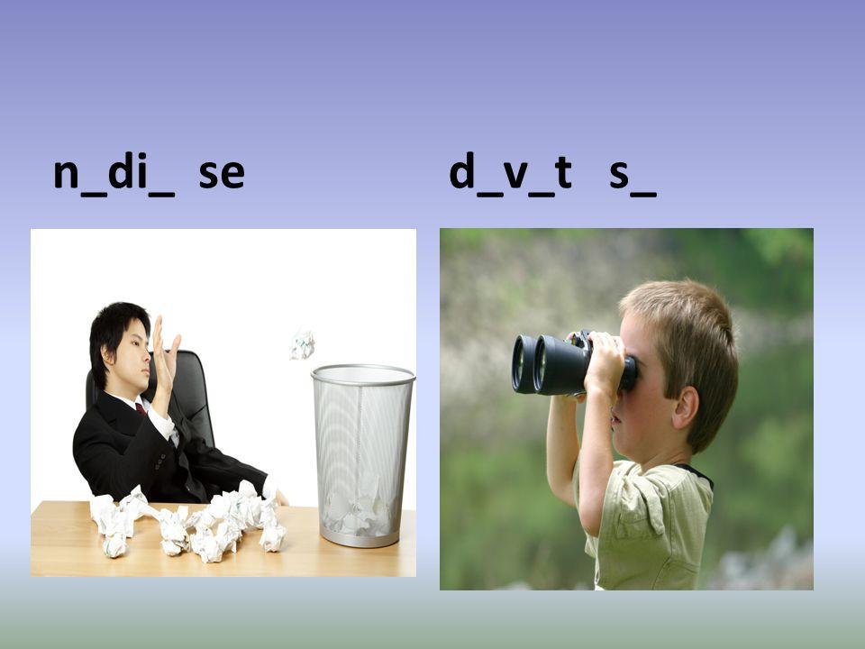 n_di_ se d_v_t s_