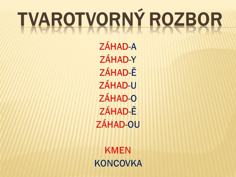 ZÁHAD-A ZÁHAD-Y ZÁHAD-Ě ZÁHAD-U ZÁHAD-O ZÁHAD-OU KMEN KONCOVKA