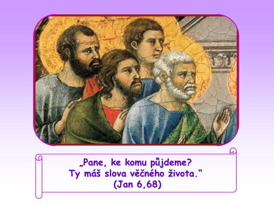 """Pane, ke komu půjdeme Ty máš slova věčného života. (Jan 6,68)"