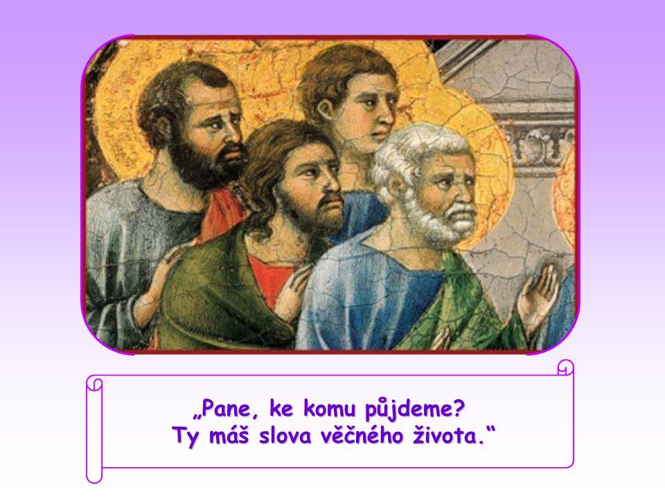 """""""Pane, ke komu půjdeme Ty máš slova věčného života."""
