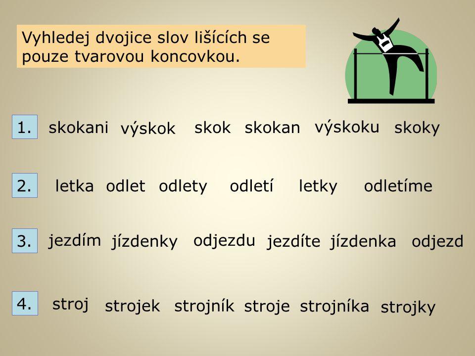 Vyhledej dvojice slov lišících se pouze tvarovou koncovkou.