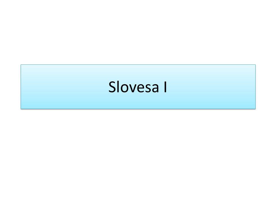 Slovesa I
