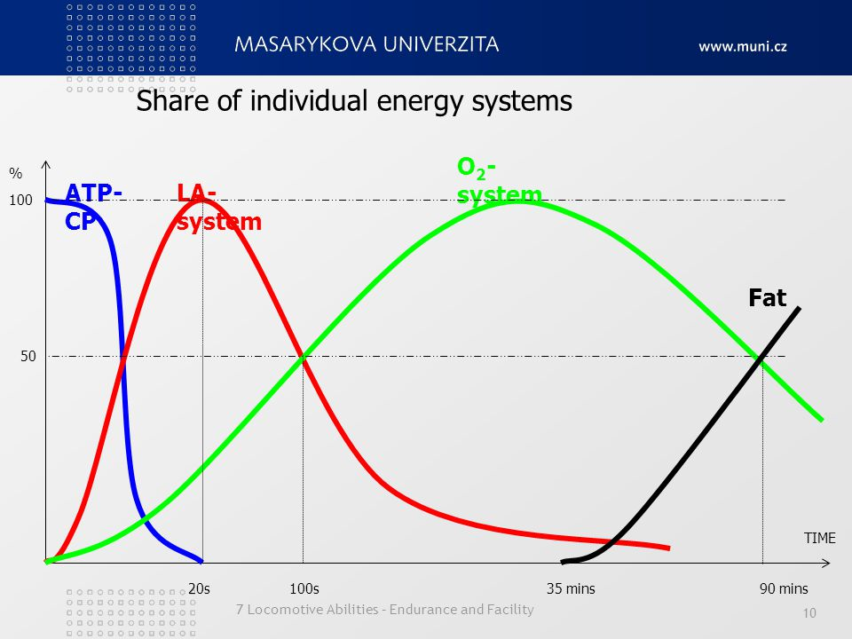 Share of individual energy systems