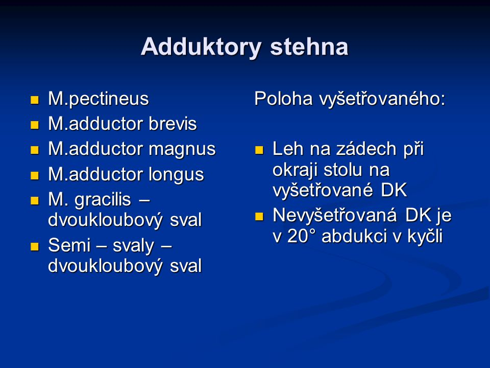 Adduktory stehna M.pectineus M.adductor brevis M.adductor magnus