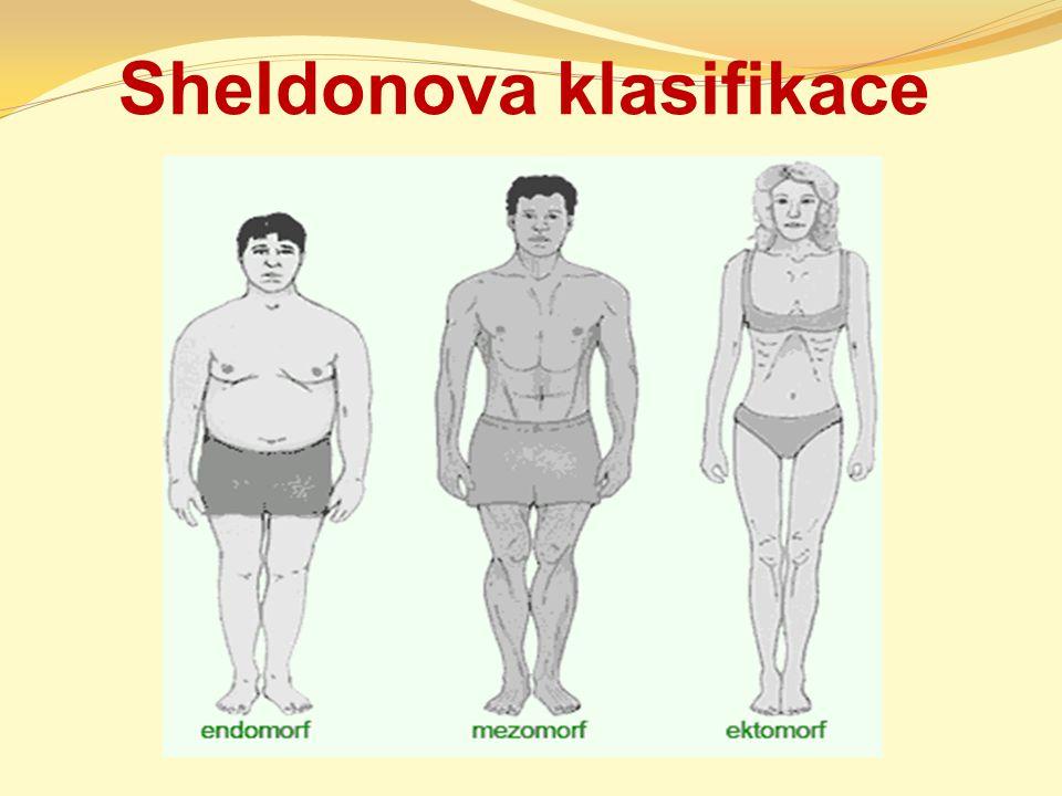 Sheldonova klasifikace
