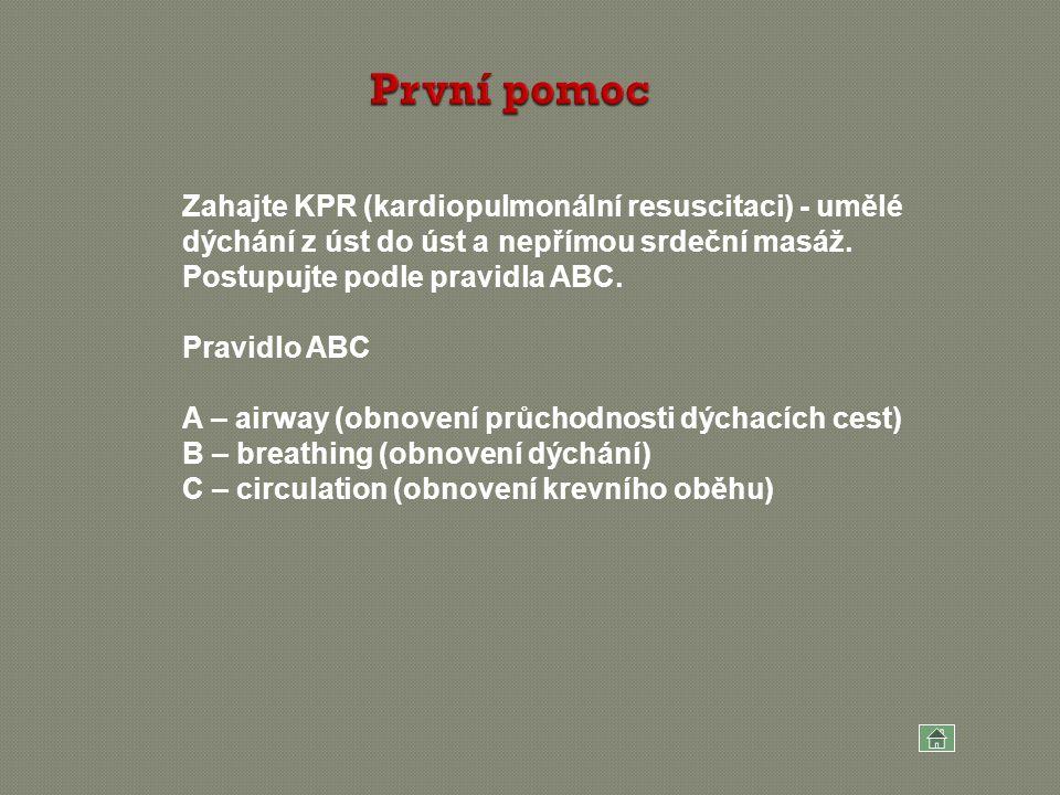 První pomoc Zahajte KPR (kardiopulmonální resuscitaci) - umělé dýchání z úst do úst a nepřímou srdeční masáž. Postupujte podle pravidla ABC.