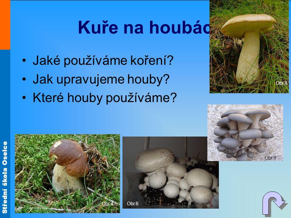 Kuře na houbách Jaké používáme koření Jak upravujeme houby