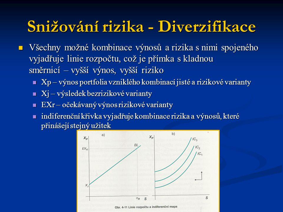 Snižování rizika - Diverzifikace