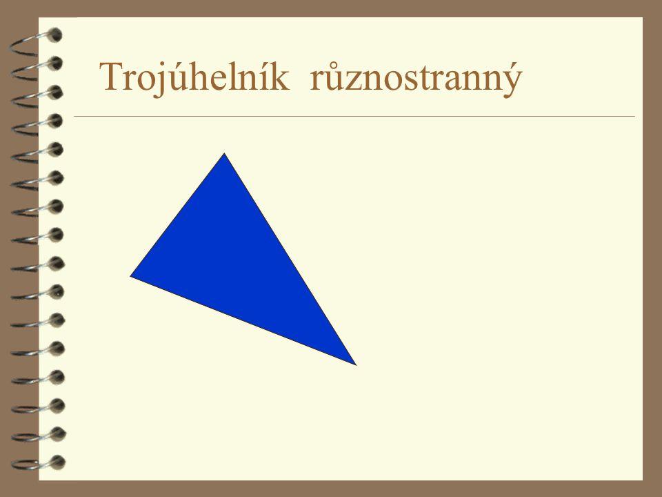 Trojúhelník různostranný
