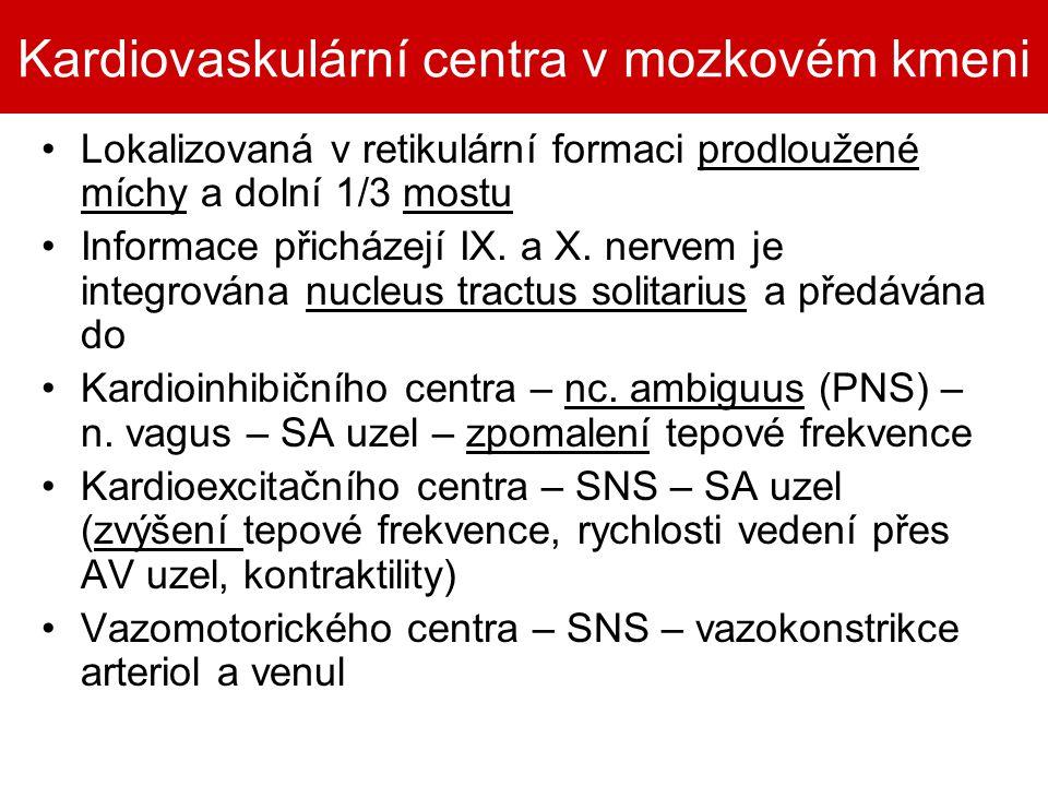 Kardiovaskulární centra v mozkovém kmeni