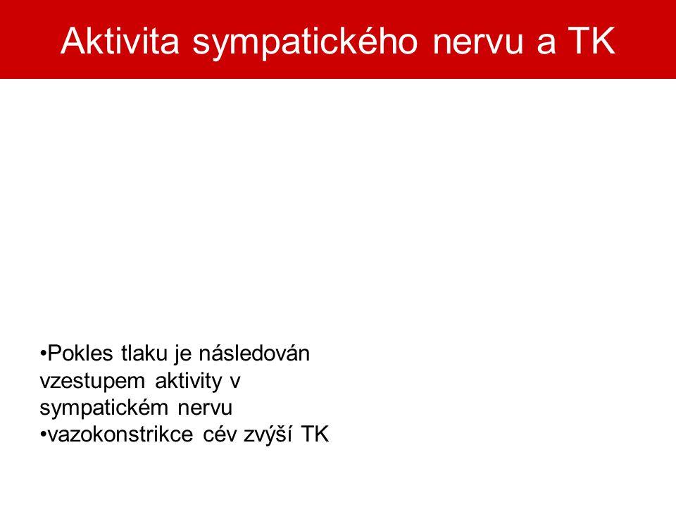 Aktivita sympatického nervu a TK