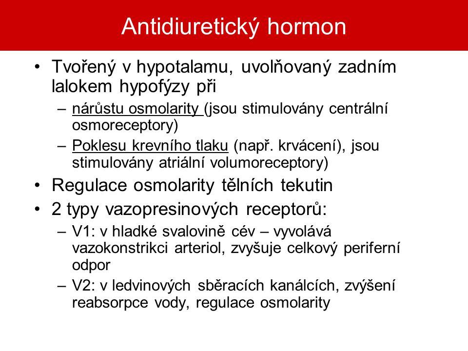 Antidiuretický hormon