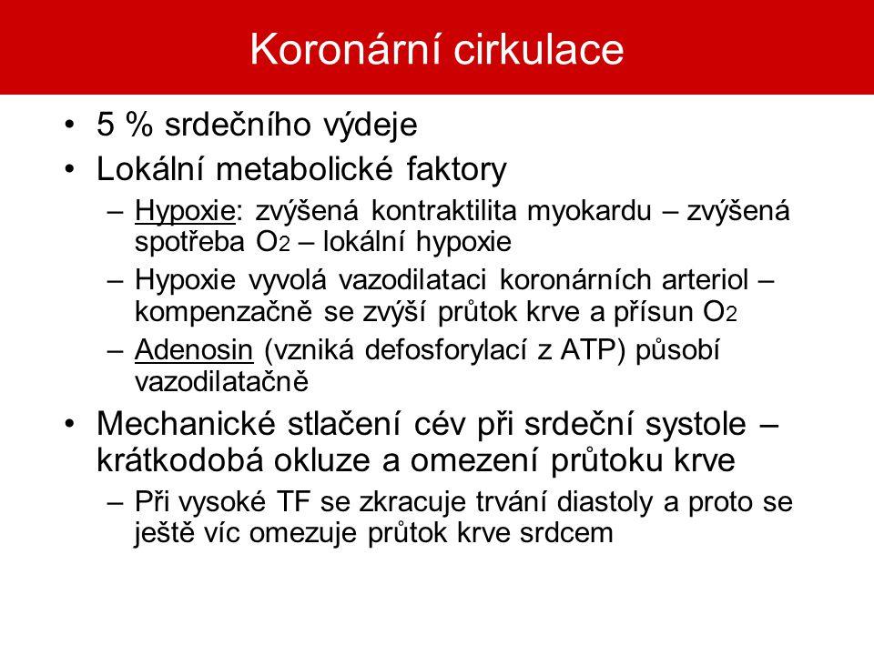 Koronární cirkulace 5 % srdečního výdeje Lokální metabolické faktory