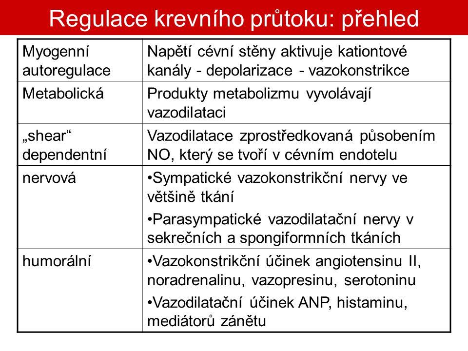 Regulace krevního průtoku: přehled