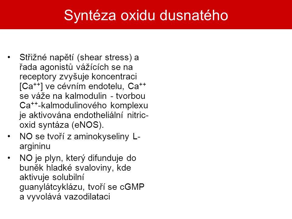 Syntéza oxidu dusnatého