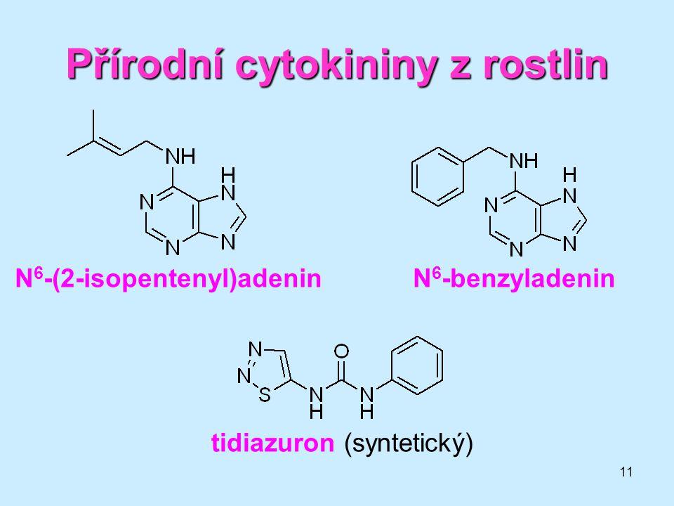 Přírodní cytokininy z rostlin