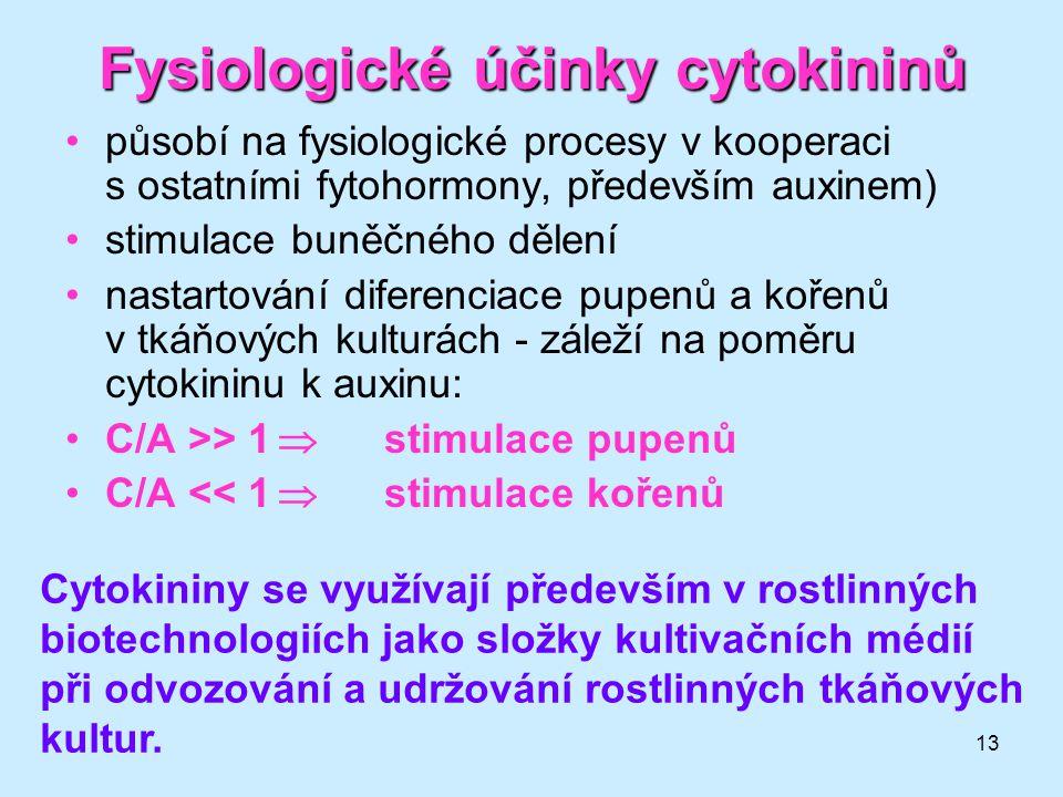 Fysiologické účinky cytokininů