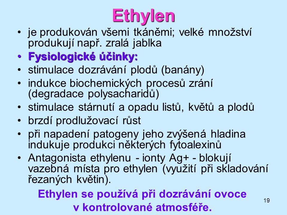 Ethylen se používá při dozrávání ovoce v kontrolované atmosféře.