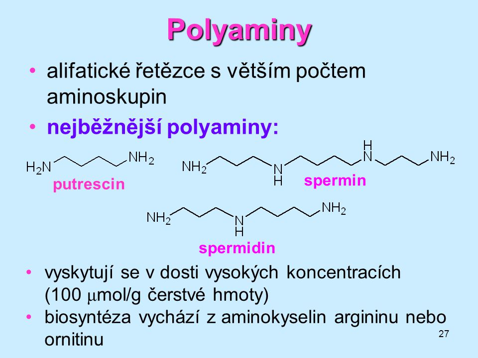 Polyaminy alifatické řetězce s větším počtem aminoskupin
