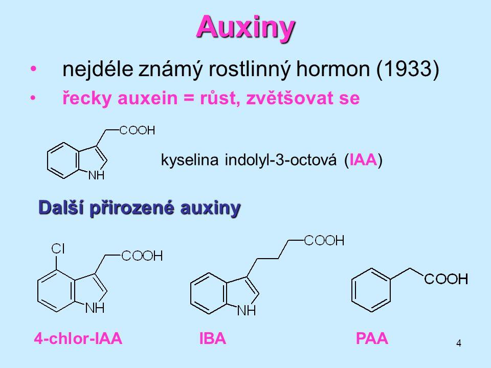 Auxiny nejdéle známý rostlinný hormon (1933)