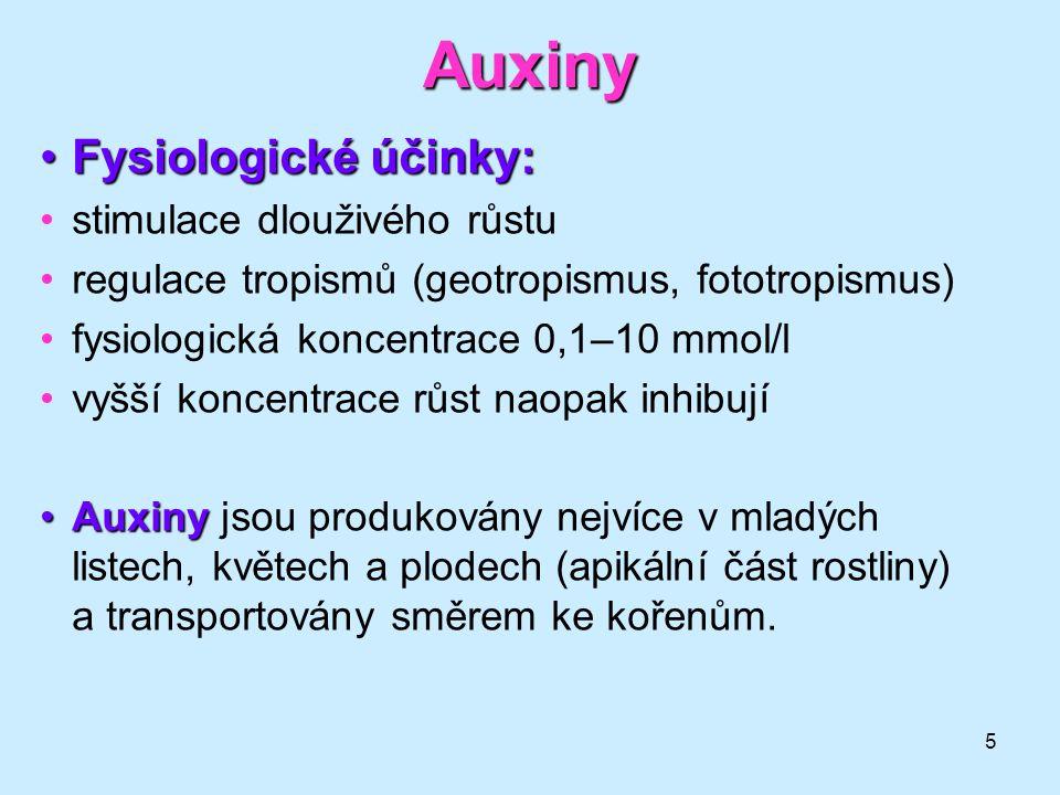 Auxiny Fysiologické účinky: stimulace dlouživého růstu