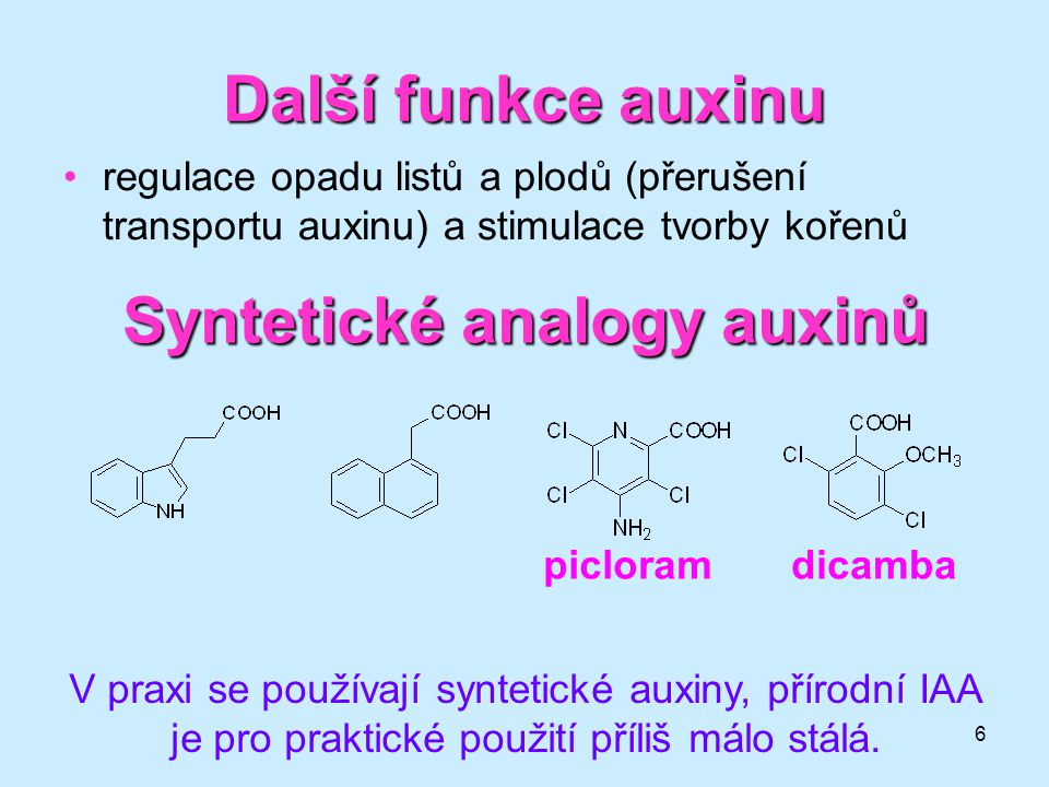 Syntetické analogy auxinů