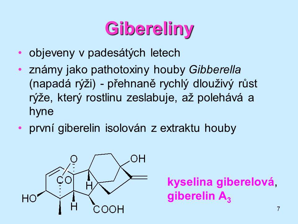 Gibereliny objeveny v padesátých letech