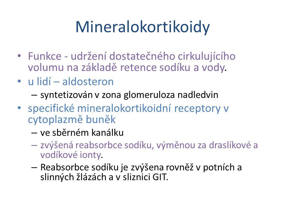 Mineralokortikoidy Funkce - udržení dostatečného cirkulujícího volumu na základě retence sodíku a vody.