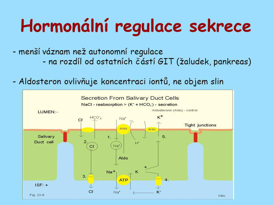 Hormonální regulace sekrece