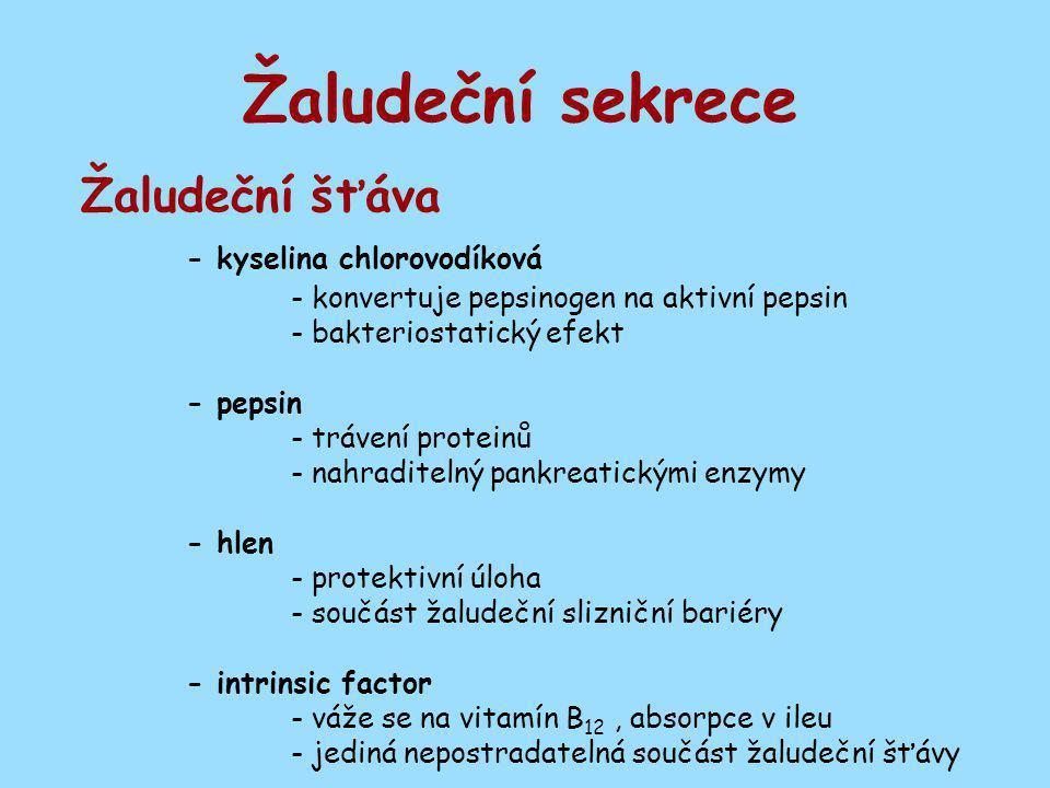 Žaludeční sekrece Žaludeční šťáva - kyselina chlorovodíková