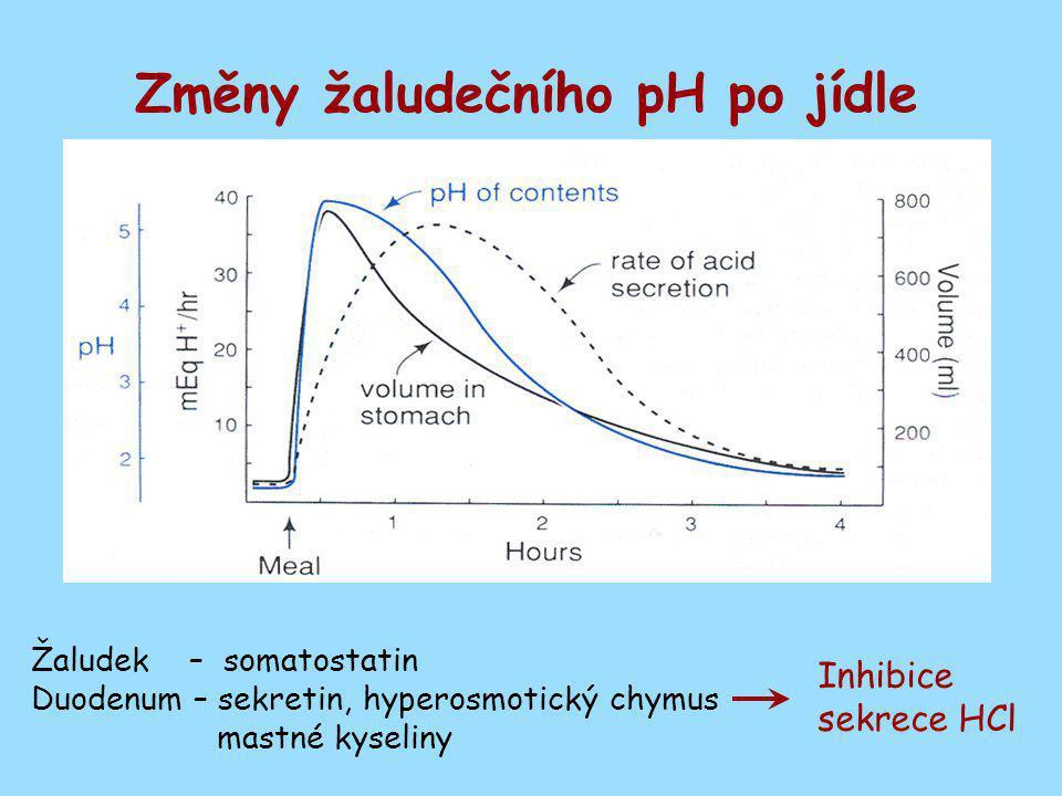 Změny žaludečního pH po jídle