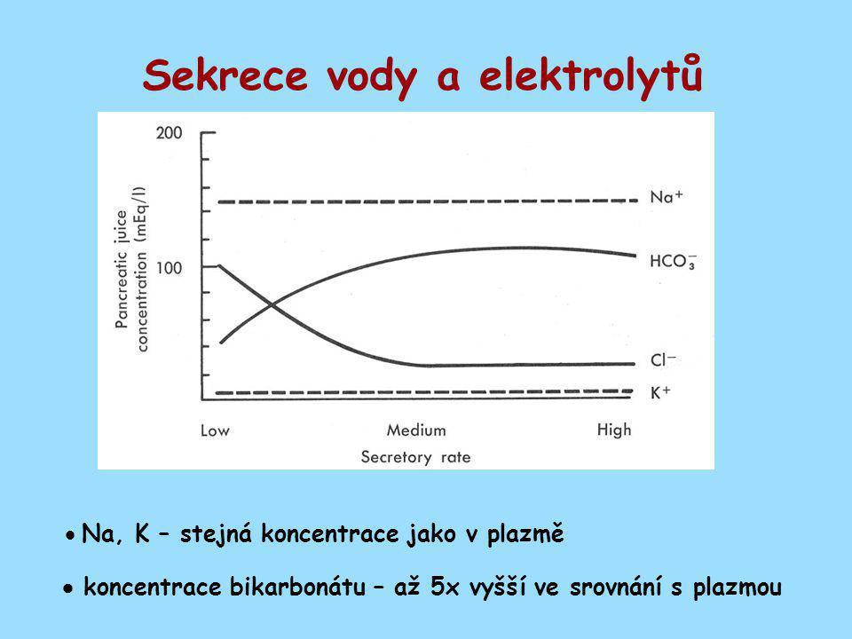 Sekrece vody a elektrolytů
